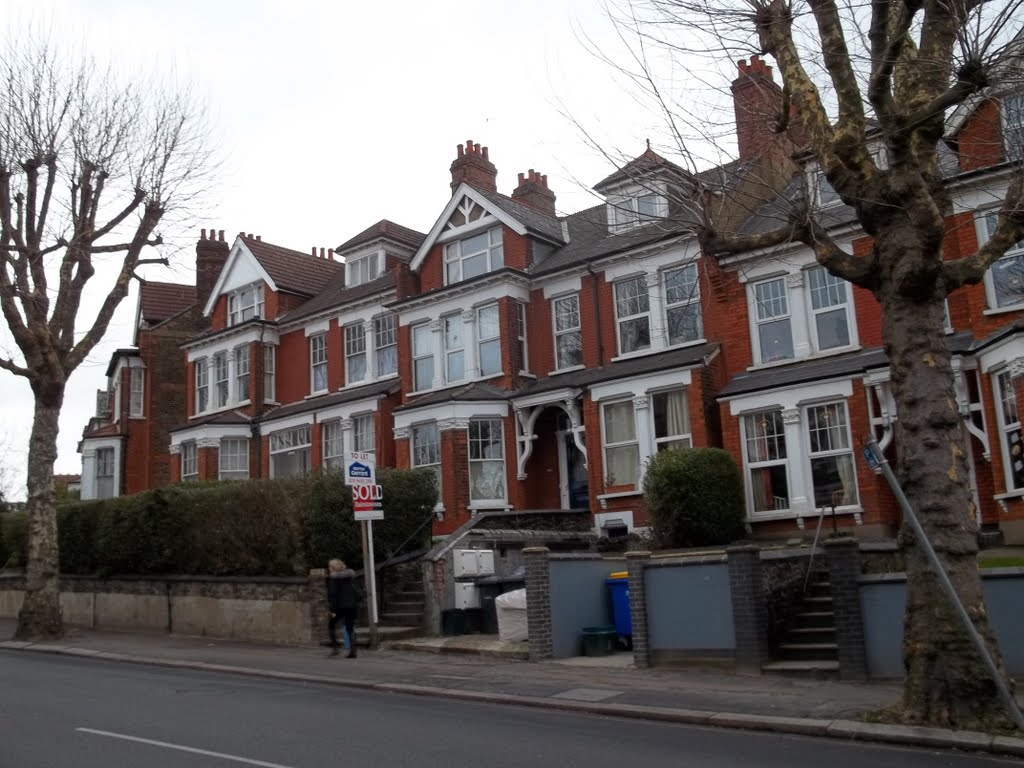 48668942 - Muswell Hill The Borough